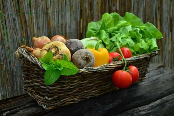 Jak stworzyć przydomowy warzywnik?